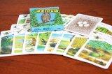 東ドイツ(DDR) 動物カード  36枚 1988年